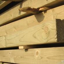松木板材进口松木板材樟子松板材南方松板材图片