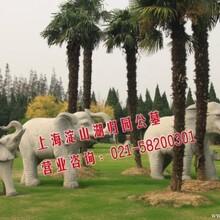 淀山湖墓地咨询接洽上海淀山湖归园风水采光墓地参数