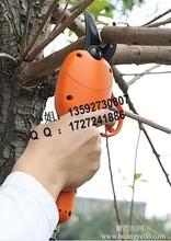 苹果树修剪子厂家直销果树剪子