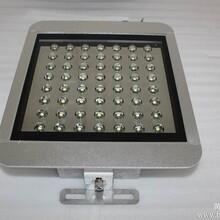 供应80W  100W LED油站灯 油棚灯