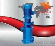 立式多级离心泵图片