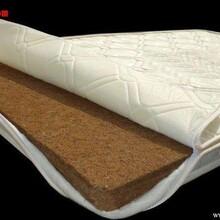 关注棕榈床垫关注健康的北京纯天然椰棕榈床垫厂图片