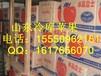 供应山东冷库苹果山东冷库储存红富士苹果供应