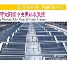 真空管太阳能图片