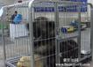 西安铁路托运宠物服务