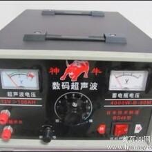 电子捕鱼器销售,声波捕鱼器的价格,电子电鱼机