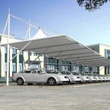 专业制造汽车棚膜结构停车棚停车棚价格实惠