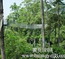 上海劳务派遣办理图片