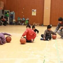 上海青少年篮球培训皇家团队-小皇帝篮球俱乐部