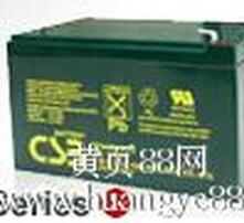 工业电源专用蓄电池图片