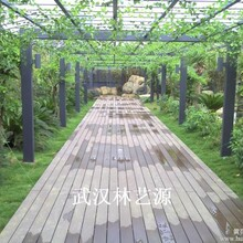 郑州塑木地板-郑州塑木栏杆-郑州塑木廊架-郑州塑木凉亭