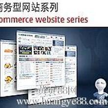 广州定制企业网站设计,专业企业方案解决。