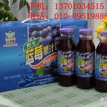 大兴安岭野生蓝莓果汁假一赔十万清明节礼品