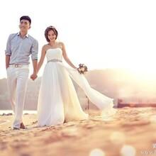 尊贵奢华婚纱套系
