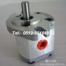 郑州台湾新鸿齿轮泵总代理图片