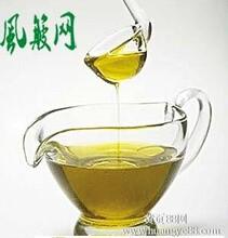 山茶树生长环境