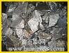 收购铌铁回收65铌铁巴西铌铁