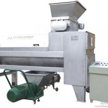 领先LXQHJ-5型橄榄果汁果酒设备-橄榄去核机图片