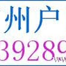 专业提供广州户口服务办理广州户口广州户口办理公司办理广州户口公司