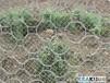 边坡防护网,各种金属丝网