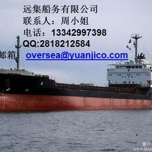 供应货物钢材大件设备车辆等出口运输天津到DUBAI迪拜