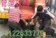 浦东商城路专业疏通马桶疏通厨房下水道不通不收费