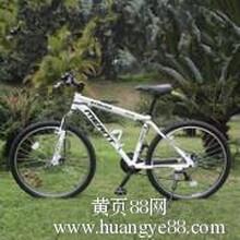 出租自行车山地车广西南宁真虎商贸有限公司