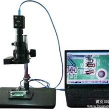 1000倍数码显微镜高清体式显微镜T001电子显微镜