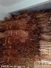 佛山废铜回收公司佛山废黄铜回收佛山废紫铜回收