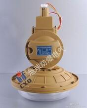 SBD1102-YQL40,东营化工厂车间照明灯具,西双版纳防爆无极灯厂家图片