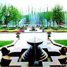 供应景观设计施工园林绿化施工诚信为本客户满意图片