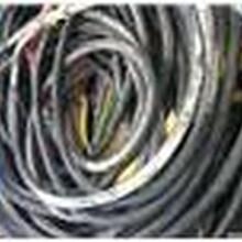 上海浦东电线电缆回收