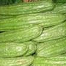 蔬菜配送公司蔬菜配送中心