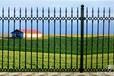 供应大通回族土族自治县合金铸造围栏铸铁围墙铸铁护栏