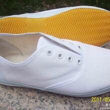 白网鞋白布鞋工作鞋运动鞋学生活动用鞋