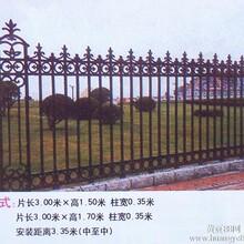 供应豪华电动伸缩门凯旋大门铸铁围墙玛钢护栏图片