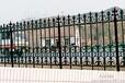 供应周至高标准高品质铸铁围墙铸铁护栏玛钢球墨合金围栏