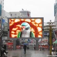 四川雅安LED户外表贴P5全彩屏