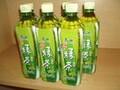 康师傅冰绿茶500ml15图片