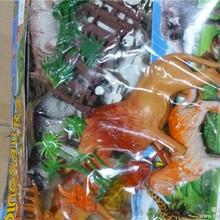 澄海信诚库存玩具有200箱动物玩具称斤批发,质优价廉图片