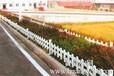 银川交通护栏草坪护栏