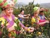 柳城蜜桔供应