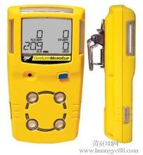 便携式单一气体检测仪GAXT-E,加拿大BW防水型