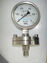 布莱迪标准螺纹式隔膜压力表YTNP-100H+销售价格650