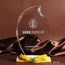 年度人物奖杯,先进集体奖杯,龙岗高档陶瓷水晶奖杯定做批发,坪山哪里定做奖杯