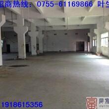 深圳公明厂房招租网4楼950平米