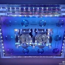 供应水晶吸顶灯客厅灯卧室灯灯具简约LED水晶吸顶灯价格古镇LED灯饰厂家