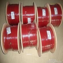 华阳生产防爆防腐RDP2-J3单相恒功率电热带耐高温油气田加热电缆图片