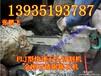 贵港专用金刚石链锯矿用127V低压电链锯厂家直销
