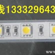 供应60灯5050软灯条